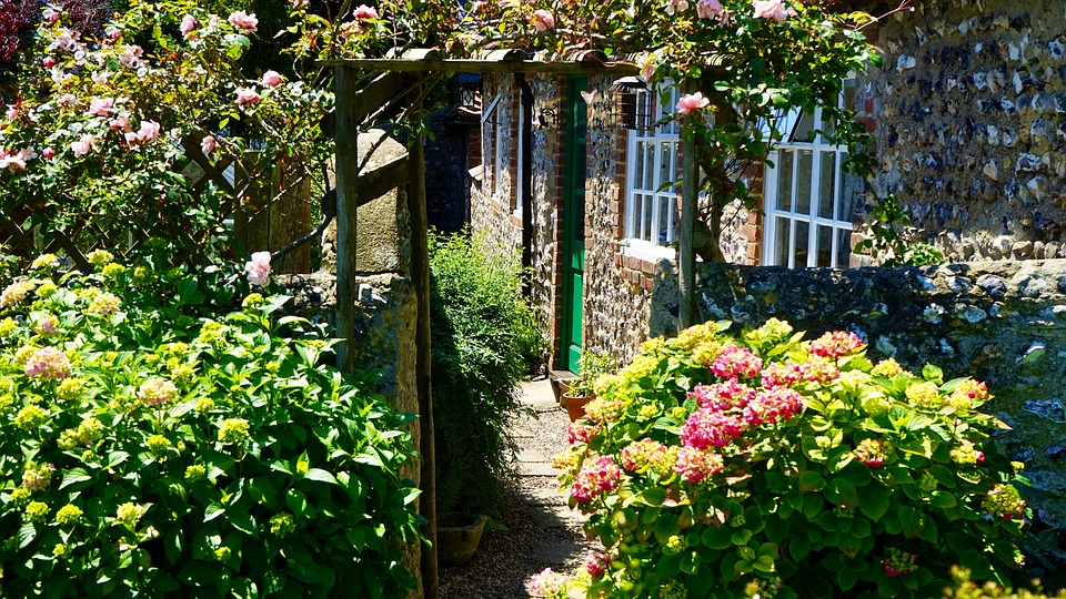 Градина, Път, Зелено, Лято, Градинарство, Цвете, Открит