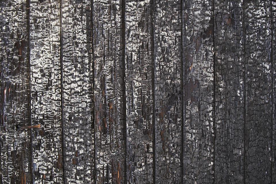 Free photo Wood Burnt Texture