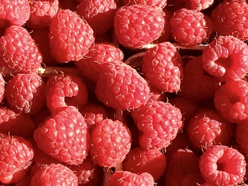 Framboise, Fruits, Baies, Rouge, Fruit, Douce, Fermer