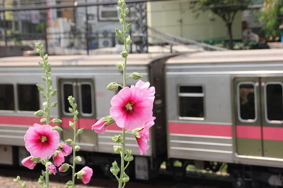 Train, Subway, Republic Of Korea, Korea