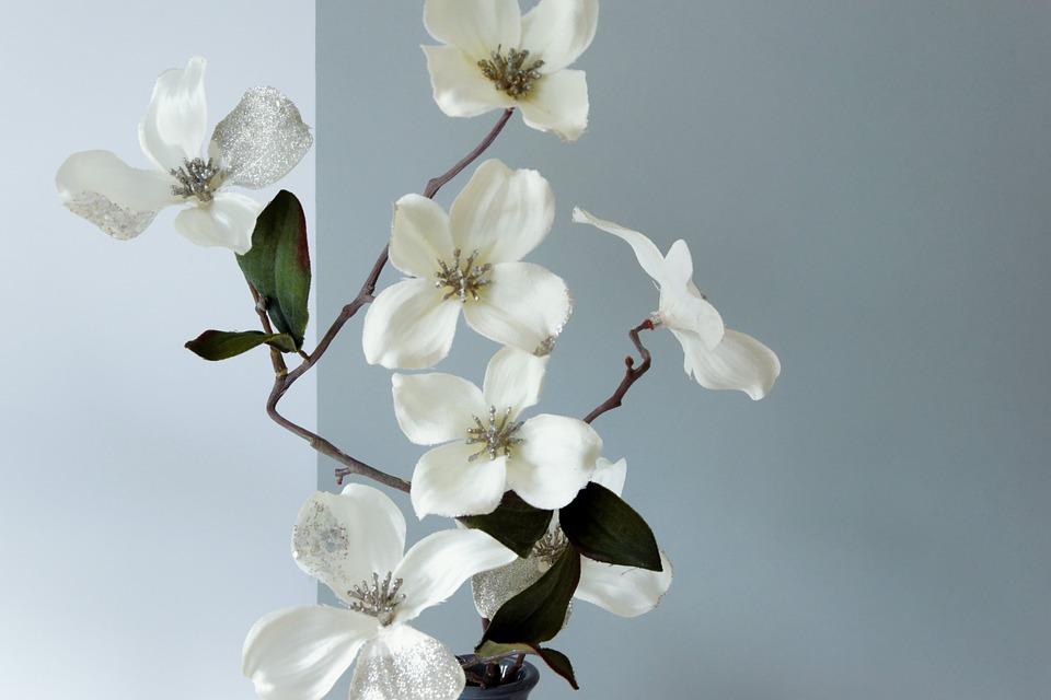 Deko Blumen blüte deko blumen kostenloses foto auf pixabay
