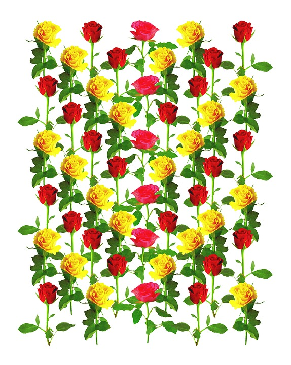 Roses Background Pattern