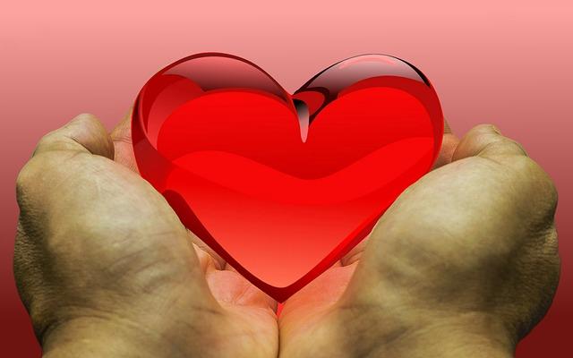 Feeling, Love, Heart, Donation, Donate, Gratitude