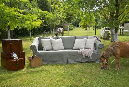 Armchair, Garden, Decorative