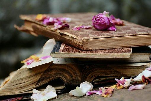 Livres, Livres Anciens, Antiquariat