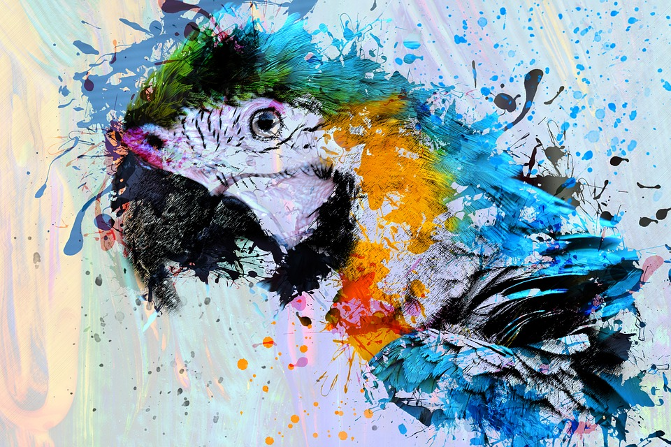 Ave Loro Animales - Imagen gratis en Pixabay
