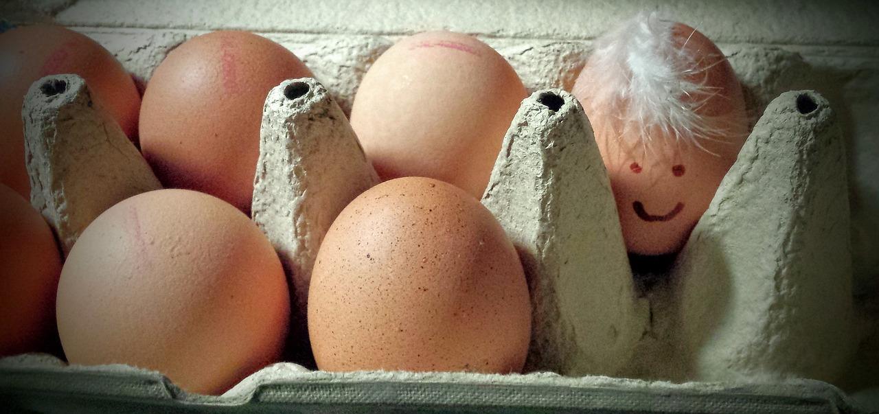 Днем, яйца прикол картинки