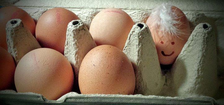 60+ Free Egg Face & Easter Photos - Pixabay