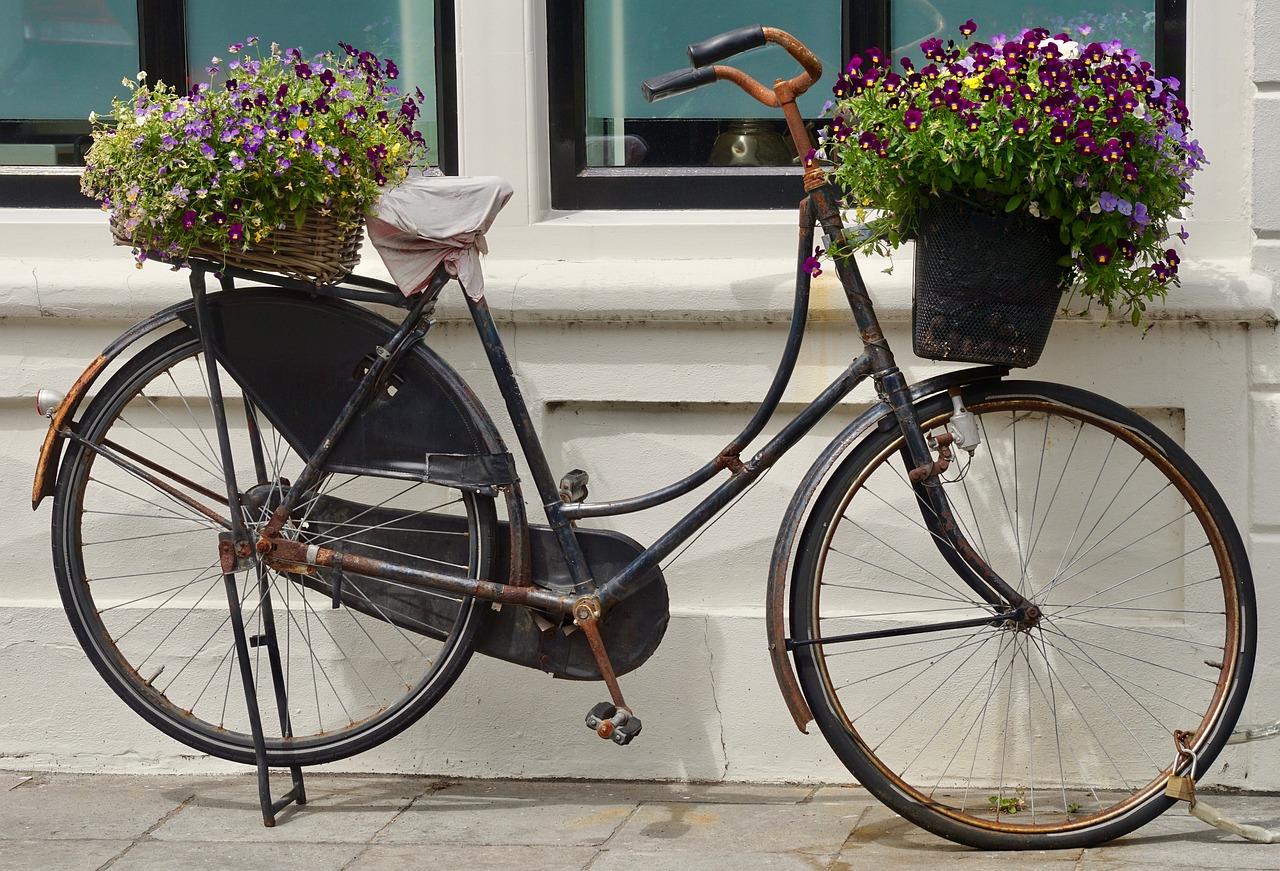 Днем, старые велосипеды картинки