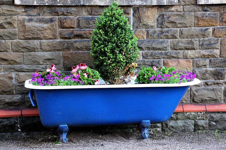 Vasca Da Bagno Per Giardino : Vasca da bagno vaso giardino · foto gratis su pixabay