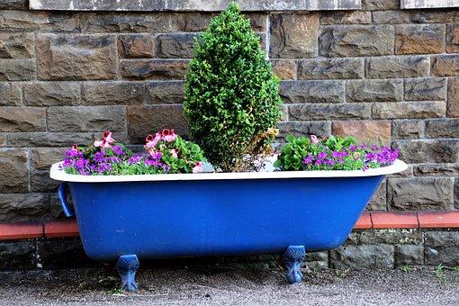 Bath, Pot Garden, Garden, Pot, Gardening