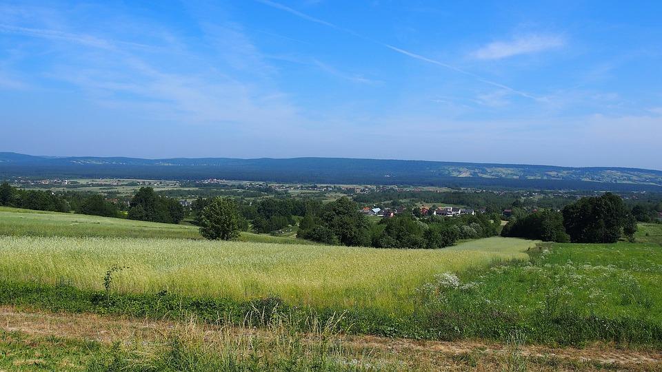 Krajobraz, Góry Świętokrzyskie, Pole, Zboże, Lato, Wieś