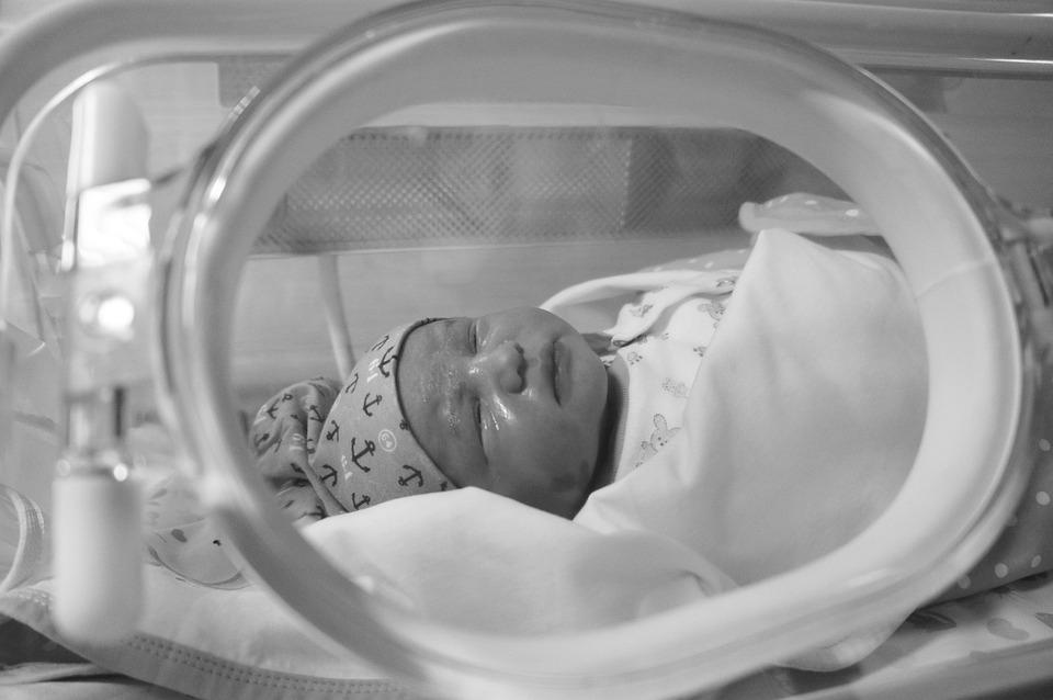 Baby, Small, Little, Cute, Newborn, Tiny, Incubator