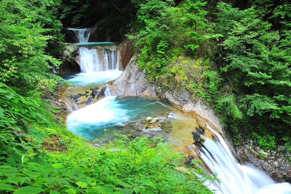 川, 滝, 自然, 水, 渓谷, 天然水, 緑, 癒し, 渓流, 森, 森林
