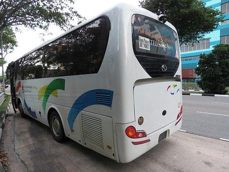 バス, バス停, シンガポール, プライベートバス, 旅行, トランスポート