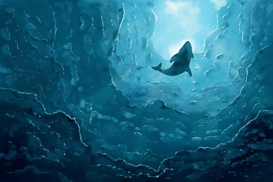 ilustraci u00f3n gratis la ballena  mar  oc u00e9ano  azul  agua shark clip art shark clip art printable free