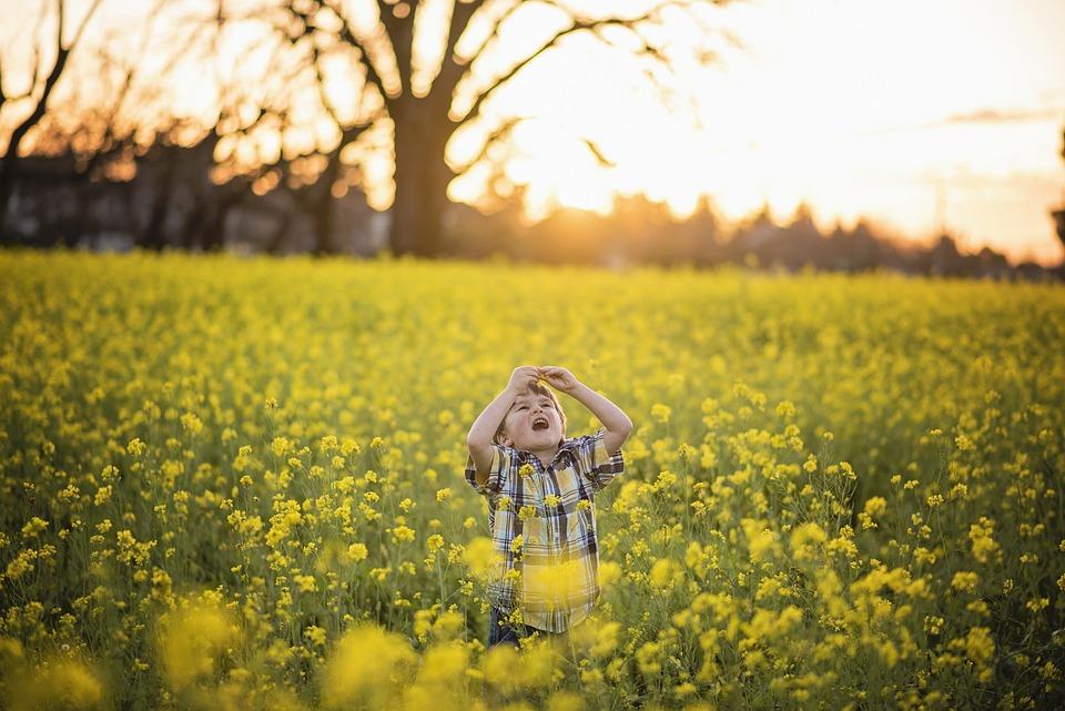Flower yellow mustard free photo on pixabay flower yellow mustard yellow flowers blossom mightylinksfo