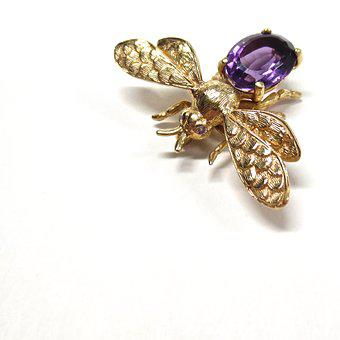 Insect, Fly, Bee, Nature, Bug, Gold