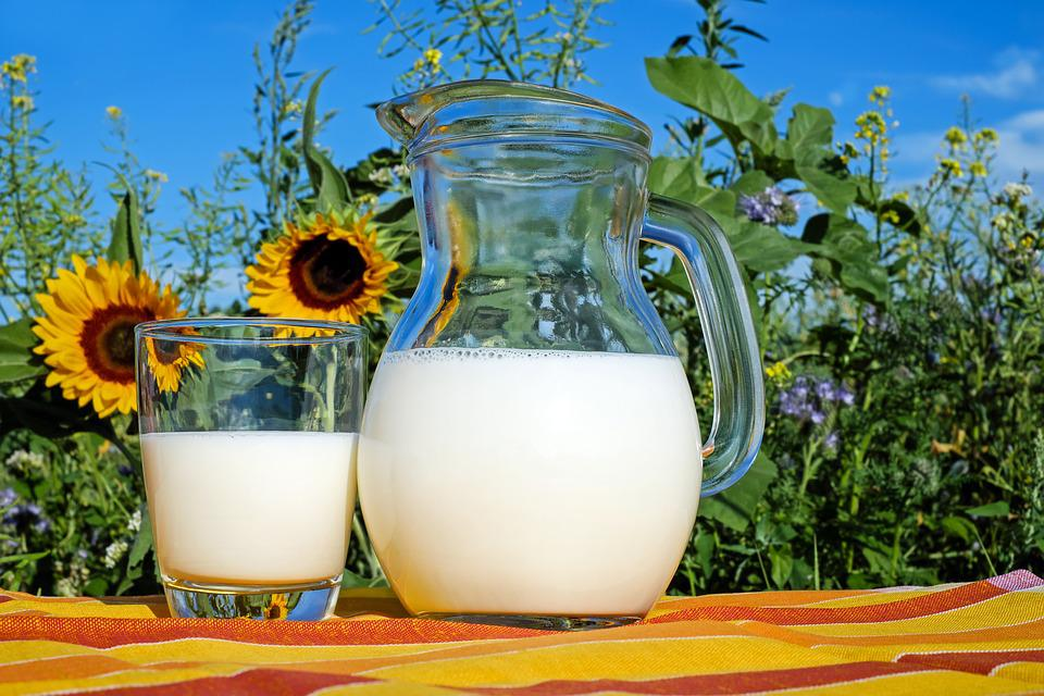 Milk, Glass, Fresh, Healthy, Drink, Food, Delicious