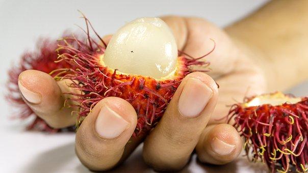 Rambutan, Fruit, Background, Hand, Fresh