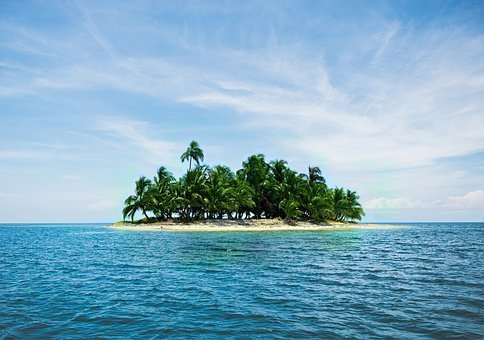 Island, Vacations, Caribbean, Palm Trees