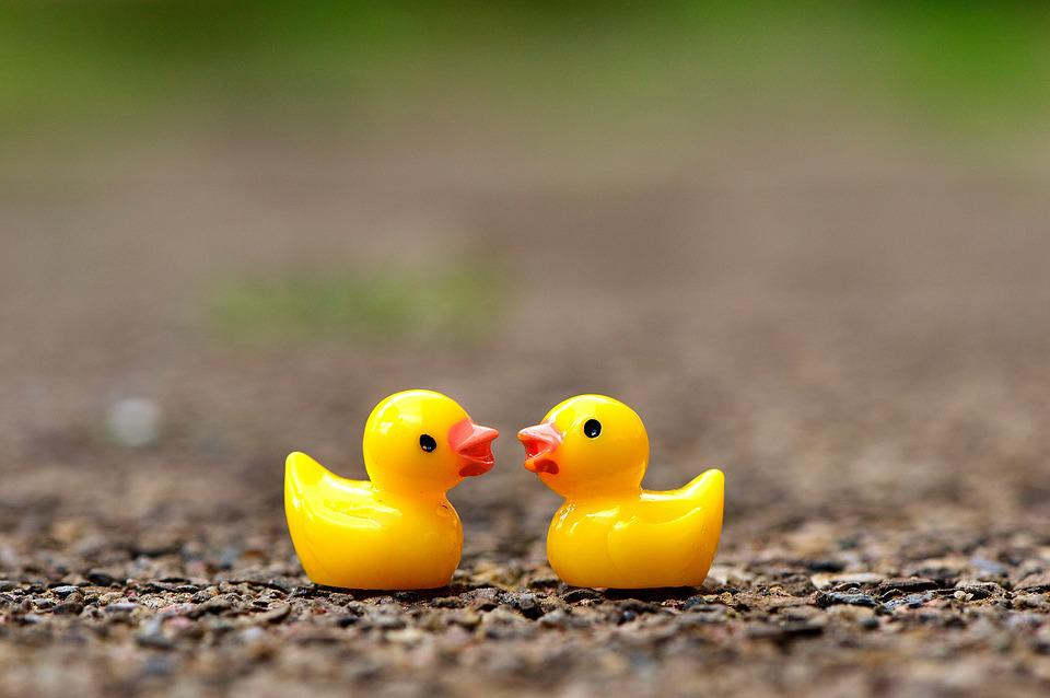 ducky figures cute free photo on pixabay
