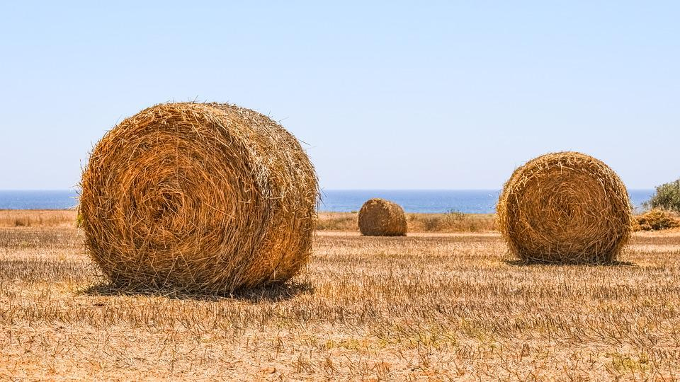 Hay Bales Field Agriculture Free Photo On Pixabay - Bales