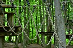 climb, high ropes course