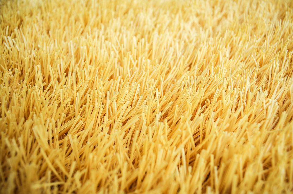 bcf983a3fb9 yellow gold grass miscellaneous background