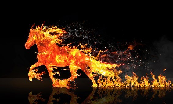 Fire Horse, Horse Running, Wastage
