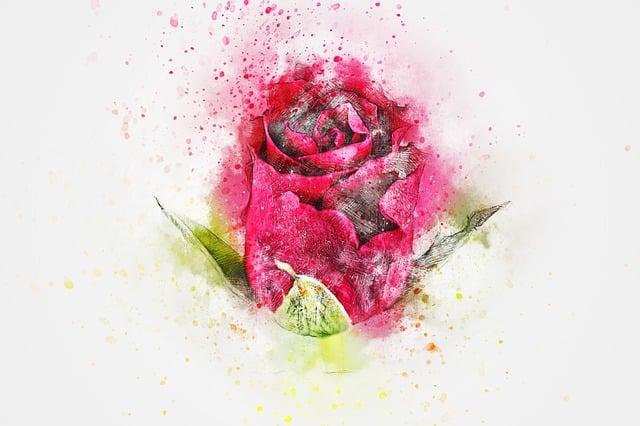 flower rose art 183 free image on pixabay