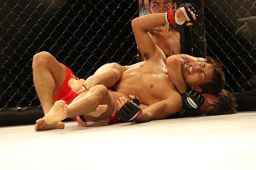 Mma, Mixed Martial Arts, Japan, Japao