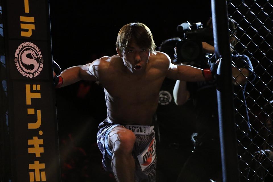 Mma, Gemischte Kampfkünste, Japan, Japao, Käfig, Tokio