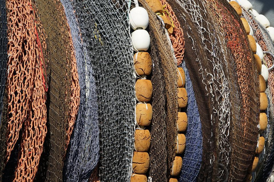 Fish, Net, Float, Catch, Fishing, Commercial, Industry