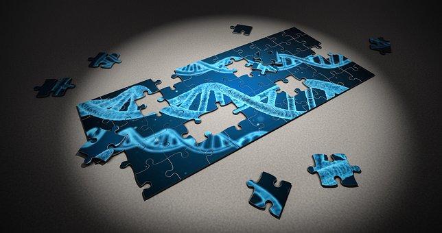 パズル, Dna, 研究, 遺伝的, ピース, 3 D, ヘルスケア, 健康