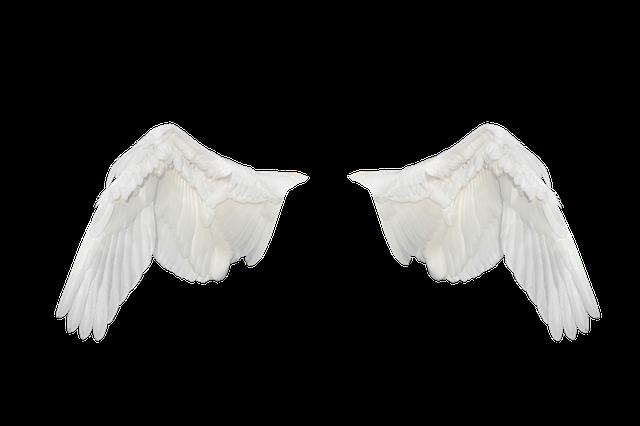 Free Illustration: Wings, Wings Ave, Flight, Fly