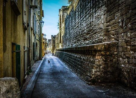 Cat, Alley, Street, Stray, Animal