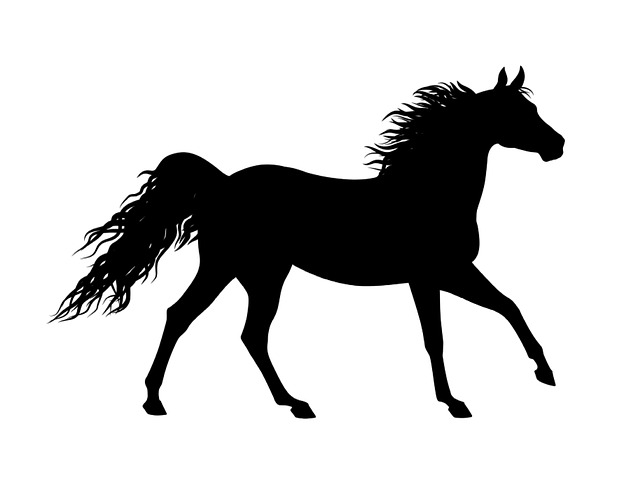 Free Illustration Silhouette Horse Animal Sticker