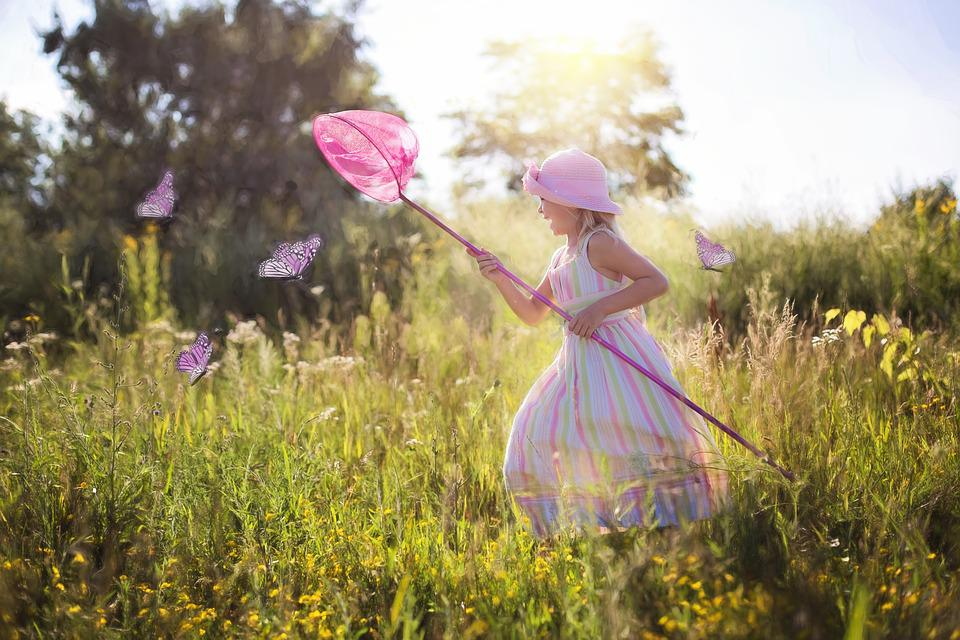 A Caccia Di Farfalle, Bambina, Fiori Di Campo, Prato