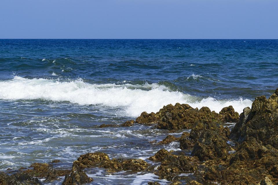 Photo gratuite oc an atlantique mer l 39 eau t image - Plantes bord de mer atlantique ...
