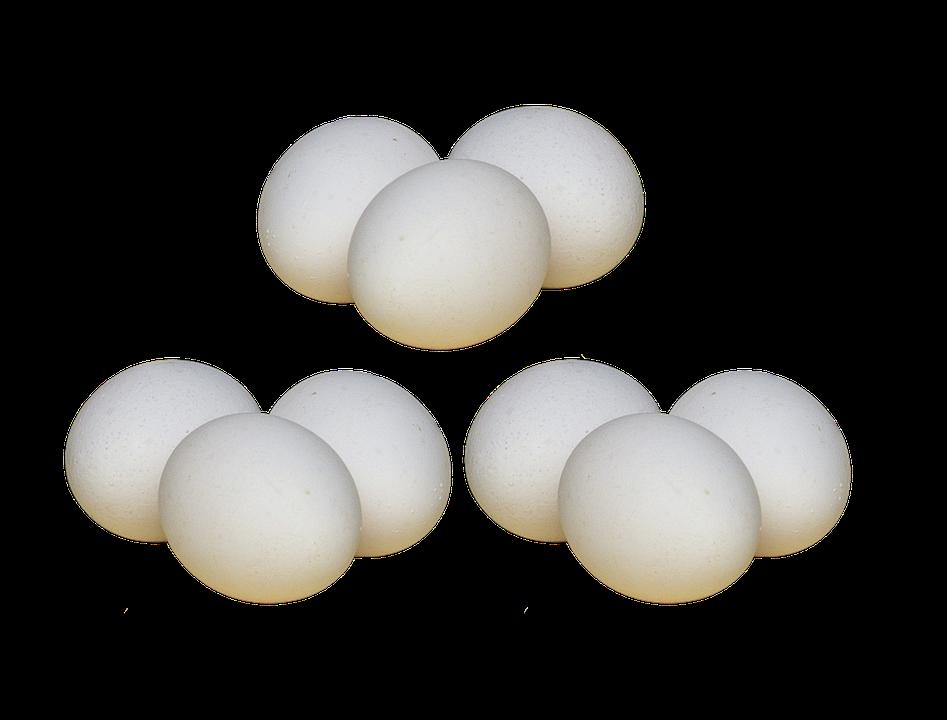 Egg Chicken Eggs White Hens Free Photo On Pixabay