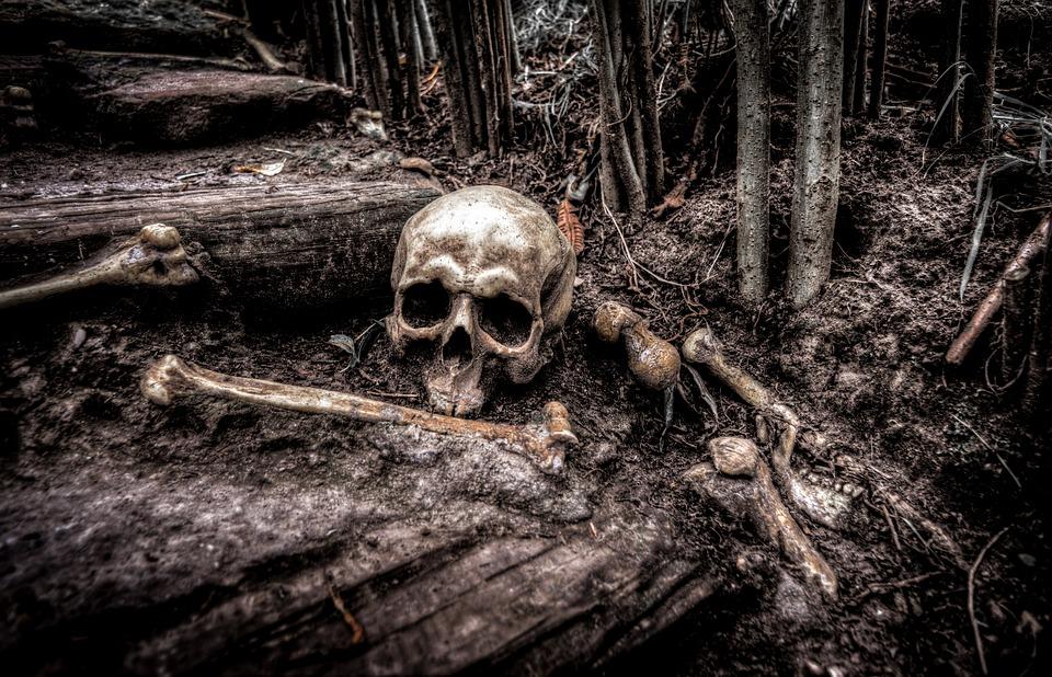 Czaszka, Kości, Szkielet, Głowy, Śmierć, Martwe