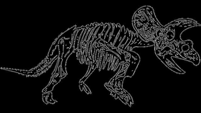 트리케라톱스 공룡 · Pixabay의 무료 이미지
