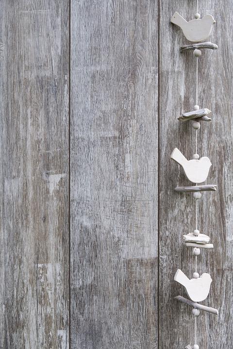 Plano De Fundo Madeira Bird Foto Gratuita No Pixabay