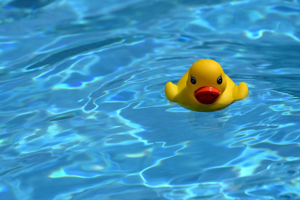 Duck Water Toy - Free photo on Pixabay