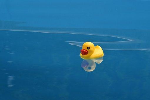 Ente, Spielzeug, Wasser, Reflexion