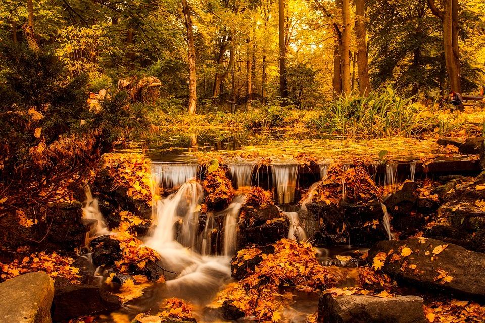 Poland landscape autumn free photo on pixabay poland landscape autumn fall foliage forest trees publicscrutiny Gallery