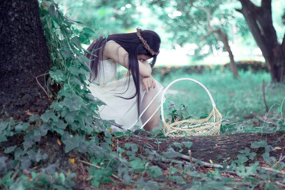 La Princesa, Bosque De La Princesa