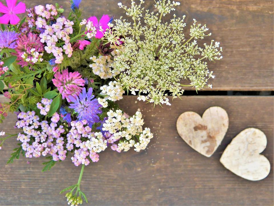 Fleurs Sauvages Des Champs Photo Gratuite Sur Pixabay