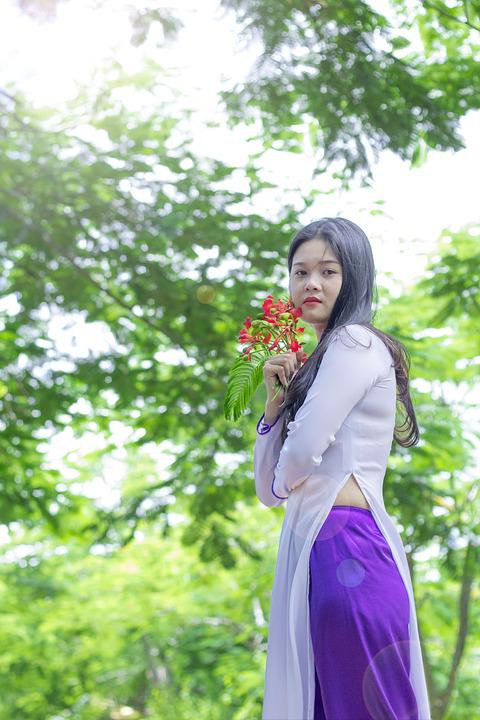 Vietnam Dress Ao Dai Girl 183 Free Photo On Pixabay